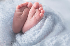 Newborn at my Studio (KarinaSchuh) Tags: abel alamogordo babyphotographer babyphotography family familyofthree newmexico newborn oterocounty babyboy babyphotos dad mom newbornphotos sleepingbaby