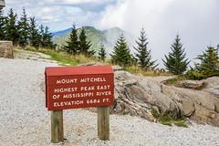 Blue Ridge Parkway, Mt Mitchell (Niemand für Polyphemus) Tags: mtmitchellstatepark