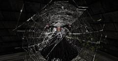 Caught (Allie Carpathia) Tags: horror autumn halloween hauntedhouse spiderweb beauty secondlife