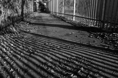 WPG Alleyways (John_E1) Tags: alleyway fence shadow monochrome