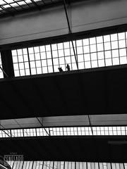 HBF (genelabo) Tags: hbf window fenster dark iphone black white bw monochrome sw schwarz weiss bahnhof trainstation roof dach munich mnchen genelabo