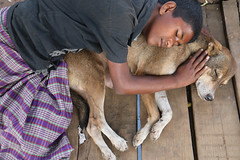 Friends (martien van asseldonk) Tags: martienvanasseldonk dhaka bangladesh dog