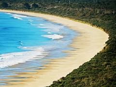 Neck beach - Tasmania - Australia (pacoalfonso) Tags: pacoalfonsocom travel australia tasmania bruny island neck beach nature