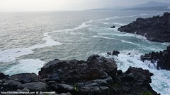 Beautiful Natural Wonders of Jeju - Jusangjeolli Cliff (Mizzlynx) Tags: jeju jejudo jejuisland nature sea island landscape jusangjeolli lavabed