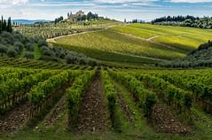 Vineyards and a Villa (Erik Pronske) Tags: trees leadinglines landscape raddainchianti olive mansion italy villa tuscany clouds gaioleinchianti toscana it