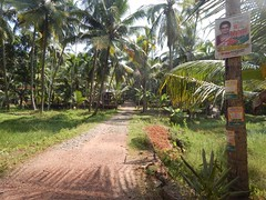 Villages Near Calicut Kerala Photography By CHINMAYA M (18)