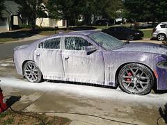 Cleaning with the foam canon (G's16PCPScat) Tags: automobile automotive car washing srt rt purple photo plumcrazypurple 2016chargerscatpack foamcanon torque chemicalguys