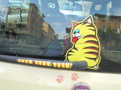 027 (en-ri) Tags: gatto tigrato cat miao sticker giallo tergicristallo auto car sony sonysti adesivo zampette