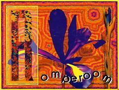 Scan1311_stitch (villalobosjayse) Tags: raveflyers raveflyer ravefliers raveflier rave ravecollection acid archive club candyflip collection lsd oldschool oldskool poster party san diego originals todd zweig losangelesraveflyers laraveflyers socal hardcore house handbill handbills