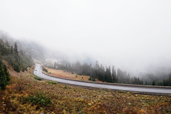 Rainier Roads (Alexander Tran | atranphoto.com) Tags: mount rainier national park nps100 goparks findyourpark atran atranphoto atranfoto pnw washington wa wash fog foggy rainy road fuji fujifilm fujifilmxus xt1