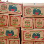 "Watermelon Boxes <a style=""margin-left:10px; font-size:0.8em;"" href=""http://www.flickr.com/photos/14315427@N00/6924298182/"" target=""_blank"">@flickr</a>"