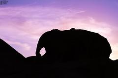 ( Elephant Rock * صخرة الفيل )