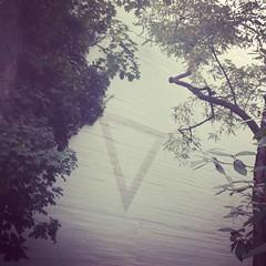 (ilana emer) Tags: trees streetart germany deutschland graffiti triangle europe bonn kunst minimalism baume minimalismus bonngermany