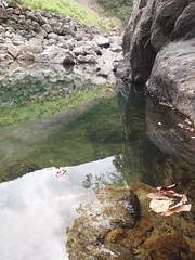 001 (maruisi77) Tags: nature  amamioshima