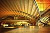 Golden Station (Paulo N. Silva) Tags: