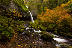 Ponytail (Dan Sherman) Tags: autumn trees fall water oregon waterfall unitedstates waterfalls pacificnorthwest gorge columbiarivergorge cascadelocks oregonwaterfalls ponytailfalls columbiarivergorgenationalscenicarea upperhorsetailfalls oregonwaterfall pacificnorthwestwaterfalls