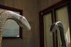 Die Schlangen... (Rüdiger Stehn) Tags: statue bronze germany deutschland europa kunst skulptur stadtmitte stadt bronzestatue bauwerk kiel innenstadt schleswigholstein kunstwerk plastik norddeutschland mitteleuropa 2015 gesundheitsamt denkmalschutz kulturdenkmal 2000er canoneos550d schlangenbrunnen alwinblaue fleethörn profankunst