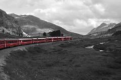 Treno della Bernina (tazzello) Tags: italia svizzera rosso alpi ferrovia bernina tirano ferroviaretica trenodellabernina