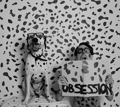2 funny faces are better than 1 (Angelo Nairod) Tags: blackandwhite dog art love nerd glasses book crazy funny friendship artistic large obsession disney nerds spots laugh stains angelo conceptual funnyfaces patches dalmatian ocd obsessive dorian cruella symbiosis thesamething obsessivecompulsivedisorder 101dalmatians nairod angelonairod angelonairodphotographer angelonairodart