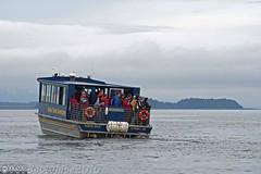 Crowding the rail for a look. (Vurnman) Tags: whales humpback alaska juneau gastineauguiding tour vacation princesscruise starprincess alaskatraveladventures northstar crowded