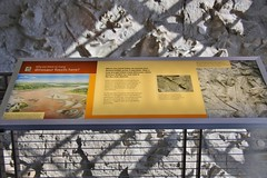 0U1A2036 Dinosaur National Monument - fossil exhibit hall (colinLmiller) Tags: 2016 utah dinosaurnationalmonument nm unitedstatesdepartmentoftheinterior us doi nps nationalparkservice interpretive sign