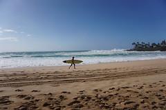 DSC05200 (neilreadhead) Tags: awt1 hawaii oahu waimeabay