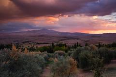 IMG_1512 (Mok Wu) Tags: tuscany italy pienza