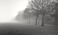 White Widow (Gareth Priest) Tags: bw landscape portrait mist fog silhouette woman mood mysterious atmosphere park perspective highcontrast
