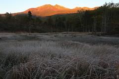 Morgenrot (Teruhide Tomori) Tags: landscape morgenrot nagano japan field nature wetland morning light sunrise          autumn  mtnorikura