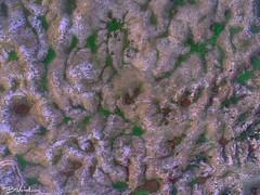The Sink-holes of mt Pantokrator, Corfu (Bill-Metallinos) Tags: corfu greece landmark eocane pantokrator pantokratoras mountain sinkholes sink hole dolines travel rock limestone dolomite geology rocks kerkira metallinos aerial