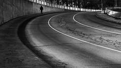 Lines & curves (marianna_a.) Tags: fence friday hff urban city street lines curves man silhouette pedestrian montreal mariannaarmata