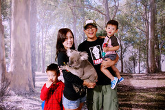 2016.10.10  Koala @ Paradise Country (amydon531) Tags: baby boys kids brothers justin jarvis family toddler cute   gold coast australia trip travel vacation paradise country koala