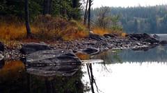 Viaredssjn om hsten (Lejon2008) Tags: paddling sjn viaredssjn sandared hst hstfrger stiltje lv stenar spegling spegelblankt