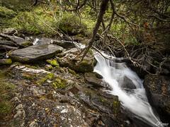 El Rio III (E.Cano) Tags: water waterfall river rio cascada agua nature naturaleza woods bosque rocks rocas autumn otoo