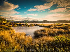 Inlet View (stewartbaird) Tags: blue newzealand spring clouds landscape inlet pauatahanui nature