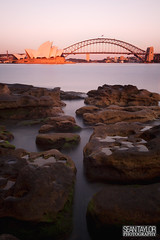 Sydney's Icons at 5am (seantaylorphotography) Tags: new south wales australia country county travel explore adventure episodes adventureepisodes art photography canon 5d 5d2 5dmk2 5dmkii image beauty colour opera house operahouse architecture shape line iconic building stunning sunrise longexposure long exposure nd10 nd 10 10stop stop botanical gardens botanicalgardens