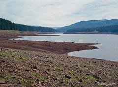 Fall creek reservoir - film (JSB PHOTOGRAPHS) Tags: autumn lowell mamiyam645 bigfallcreekroad fallcreek oregon mamiya m645 80mm film7372 reservoir lake dam water film asa400