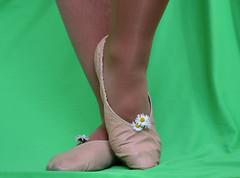 Piškoty a sedmikrásky_0025 (Merman cvičky) Tags: balletslippers ballettschläppchen ballet slipper ballerinas slippers schläppchen piškoty cvičky ballettschuhe ballettschuh punčocháče pantyhose strumpfhosen strumpfhose tights collants medias collant socks nylons socken nylon spandex elastan lycra flat