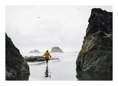 Ruby Beach (AmyJanelle) Tags: rubybeach washington beach running girl free seagulls ocean westcoast pacificnorthwest pnw