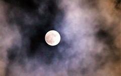 Super lune du 14 Novembre 2016 (Les photos de LN) Tags: moon lune astre nuages superlune novembre2016 évènement lumineuse ronde