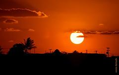 Quarta-sunset (sonia furtado) Tags: quartasunset sunset pds cuité pb ne brasil brazil soniafurtado sol explorer nanaturezainnature