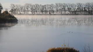 Ein frostiger Morgen an der Eider in Süderstapel - die Eider-Schleife, Stapelholm (3)