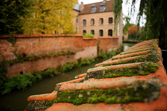 Groot Begijnhof Leuven, Leuven, Belgium () Tags: grootbegijnhofleuven  belgium leuven canon leicaelmaritr24mmf28 bokeh frank photographer cloudy travel relax friends vacation unesco worldheritage     leica autumn beautiful weekend r manuallens manualfocus manual oldlens
