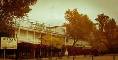En plan antiguo (vcastelo) Tags: rana verde restaurante jardines príncipe aranjuez madrid españa spain
