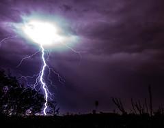 Making Contact (danielledufour430) Tags: monsoon lightning storm bolt desert nature dark night purple electricity weather sonya6000
