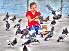 Happy .... (daystar297) Tags: girl kid child pure innocent innocence joy happy pigeon fortpierce florida birds nikon d90 feedingpigeons