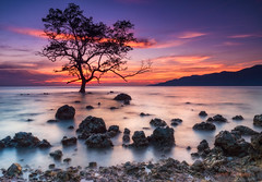 Alor (sandilesmana28) Tags: sunrise cloud rock sea beach water red slow speed tree alor island nature