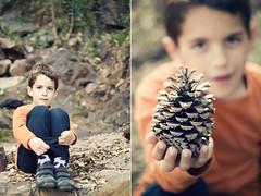 Un da en el bosque (elvira boix) Tags: forest woods diego bosque pinecone nio pia diptico dipthyc