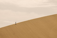 Hiking in the Desert (daniel.frauchiger) Tags: china silhouette desert dune panasonic lonely gobi gansu dunhuang gf1