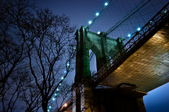 New York 2012 (John Erik) Tags: nyc longexposure bridge blue trees ny newyork reflection green yellow architecture brooklyn night lights nikon nightshot cloudy brooklynbridge eastriver nikkor bigapple d300 1024mmf3545g